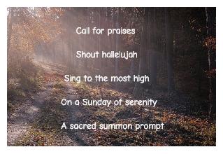 Sunday Sacred Calling